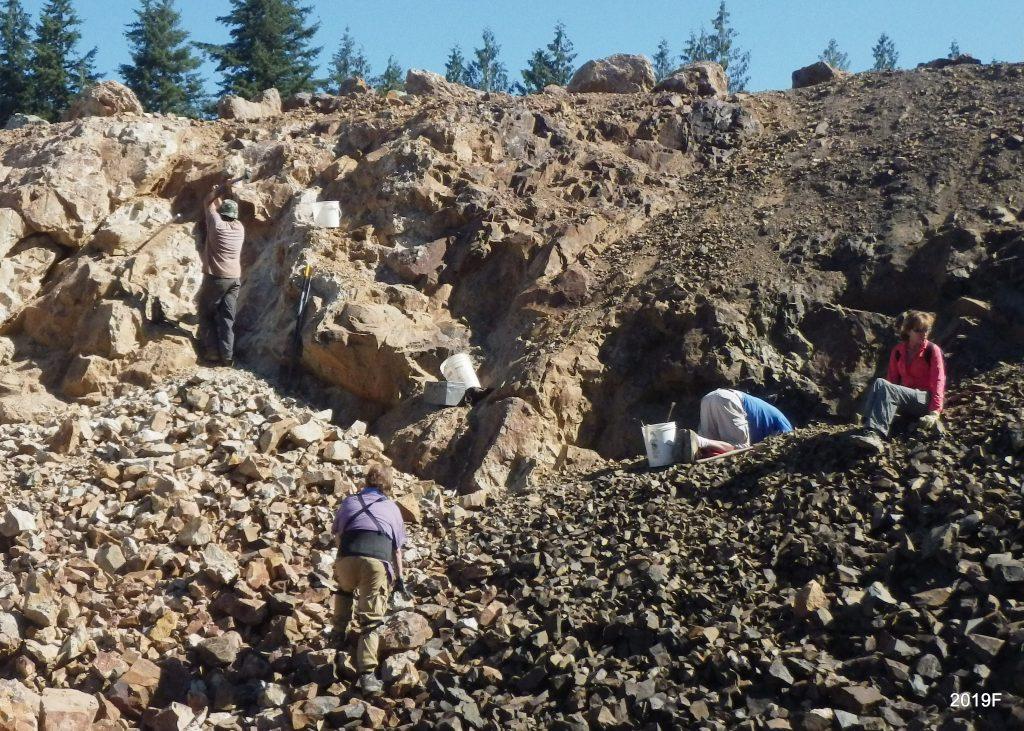 Field trip to Walker Valley quarry